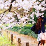 桜が咲き乱れると精神が不安定になる人